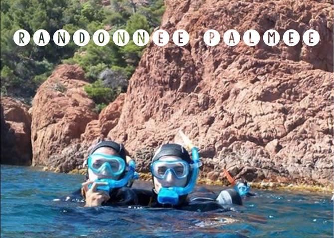 Snorkeling à fréjus