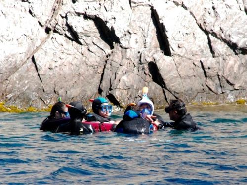 Sortie Snorkeling à port cros