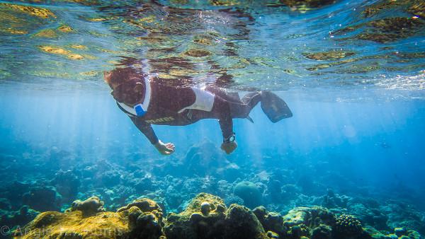 Ameo snorkel