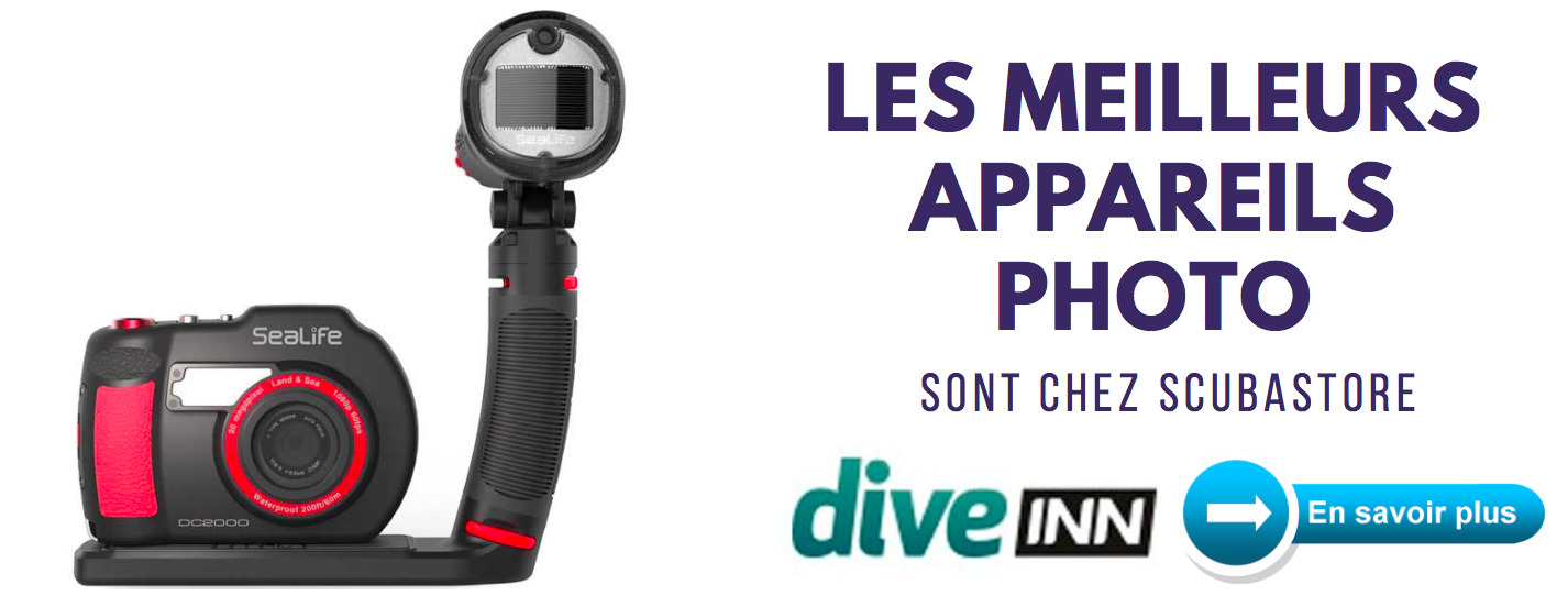 appareil photo plongee