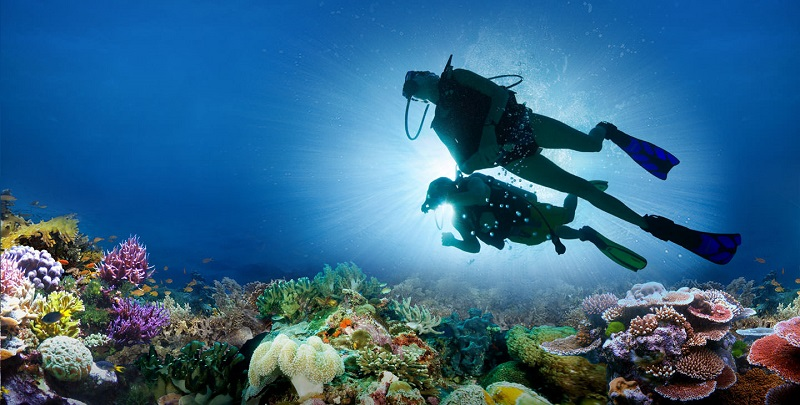 buceo caribe