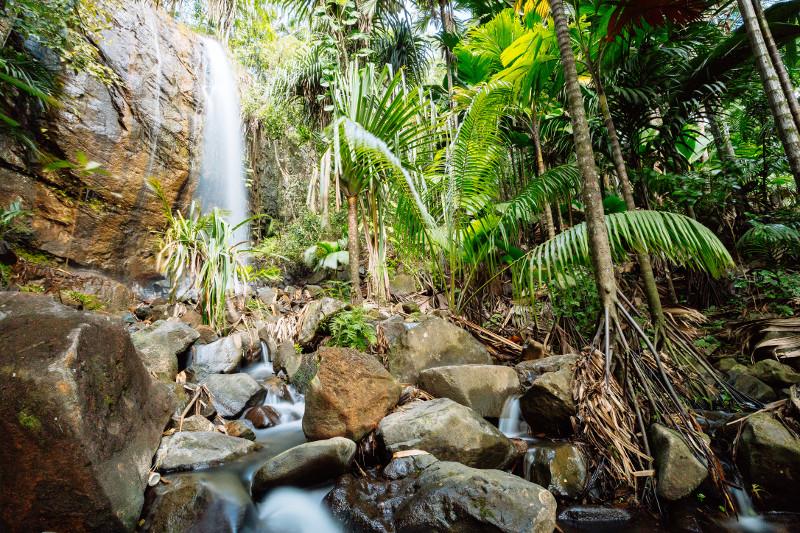 cascade seychelles
