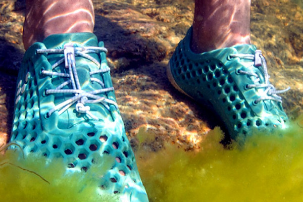 chaussures Vivobarefoot
