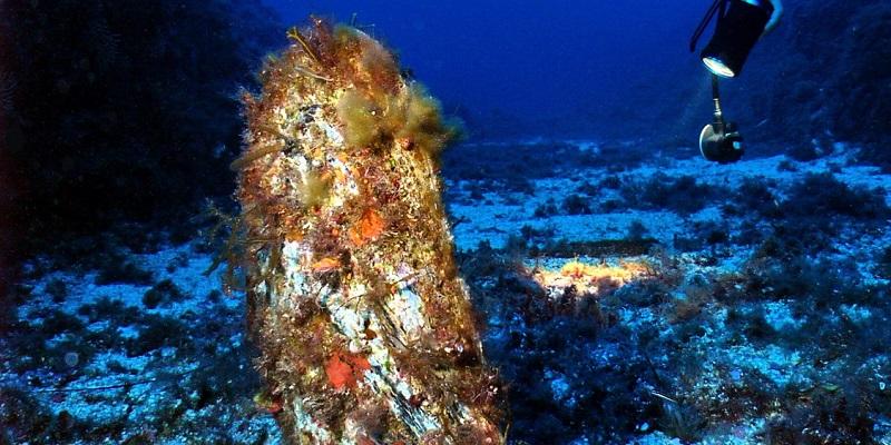 Diving site circus marifaja corsica france diver