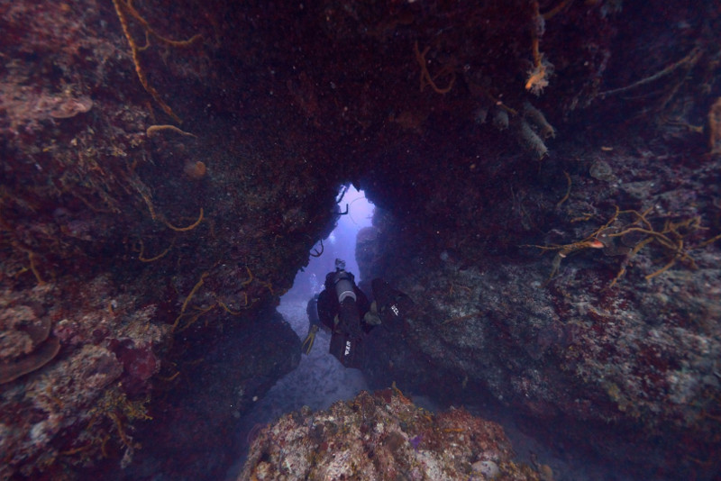 scuba diving Scuba Tony