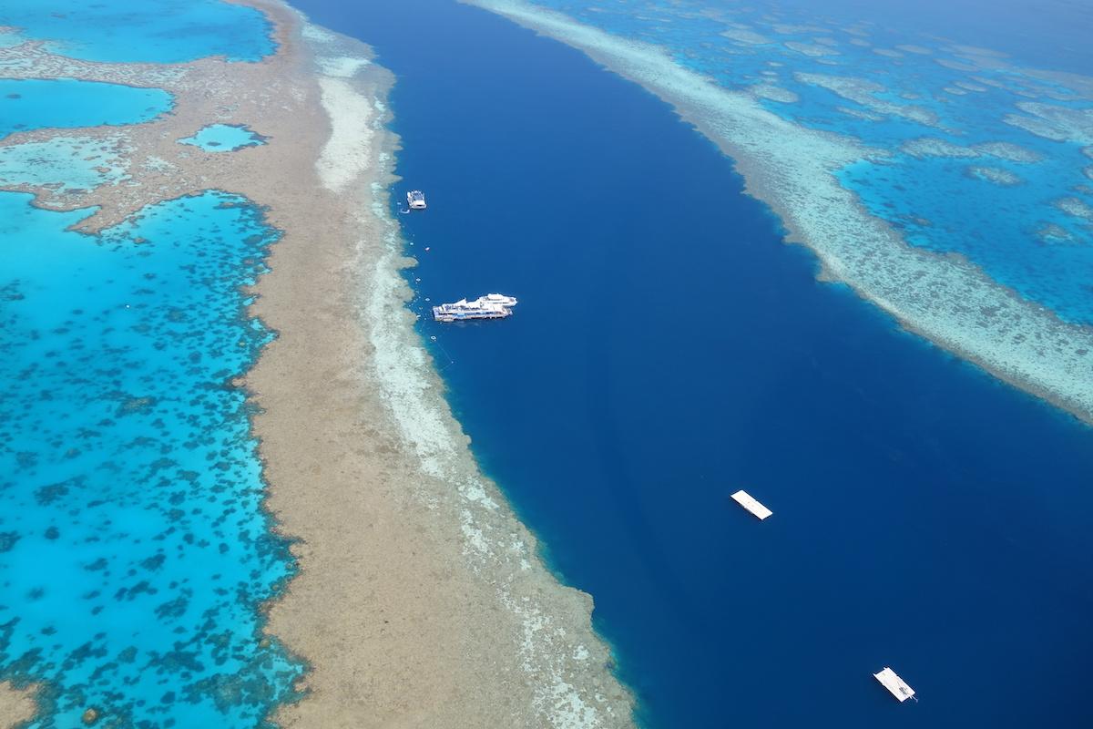 gran barrera de coral australia