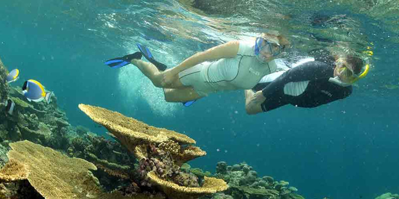 randonneur snorkeling sur récif coralien