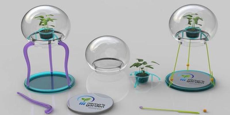 faire pousser des plantes sous l'eau mode d'emploi
