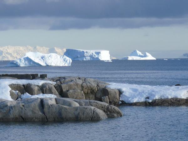 ocean antarctique