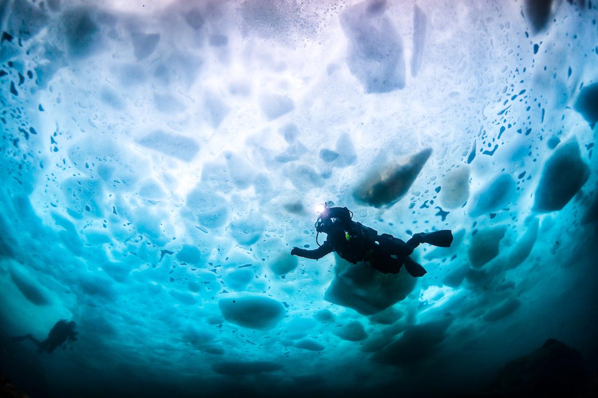 plongée sous marine arctique
