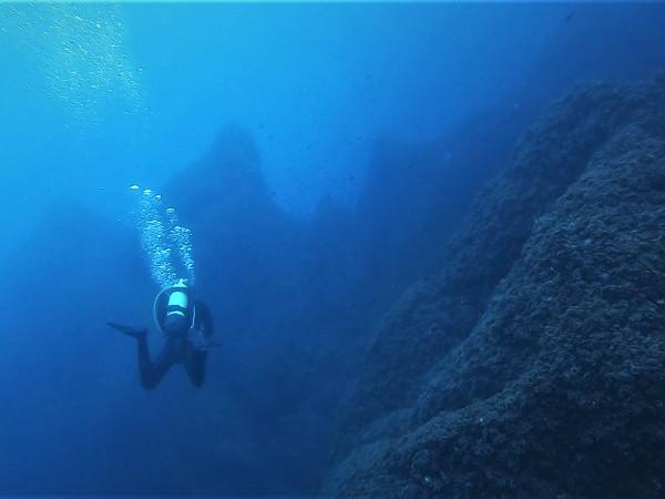 Réserve naturelle marine Cerbère Banyuls