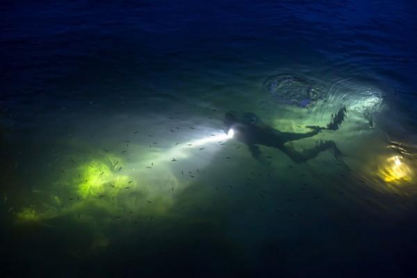 un plongeur de nuit équipé d'une lampe