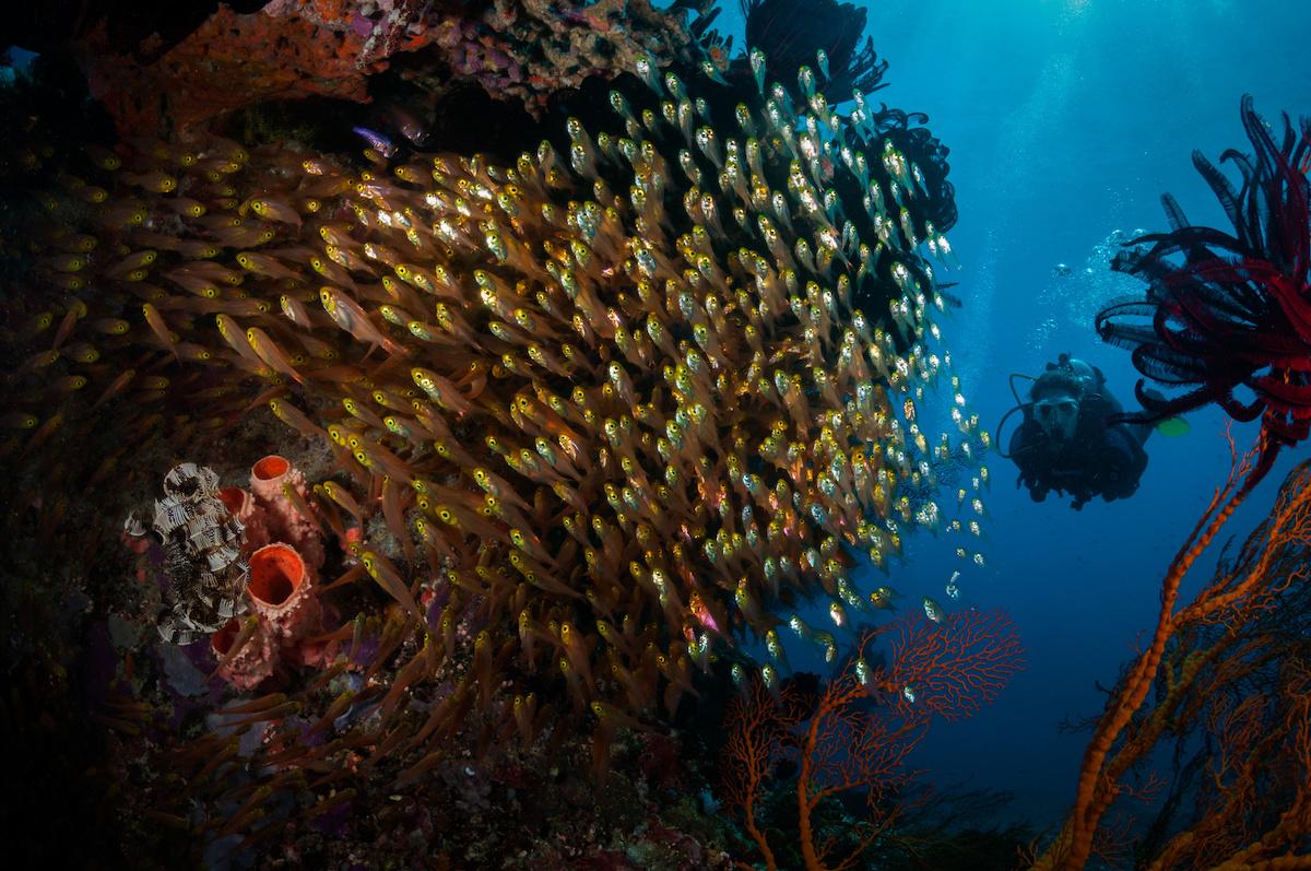 iles gili lombok
