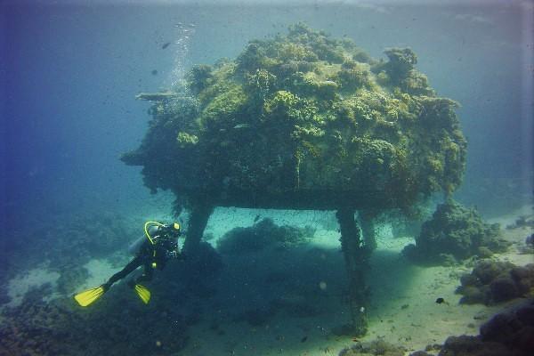 precontinente 2 cousteau