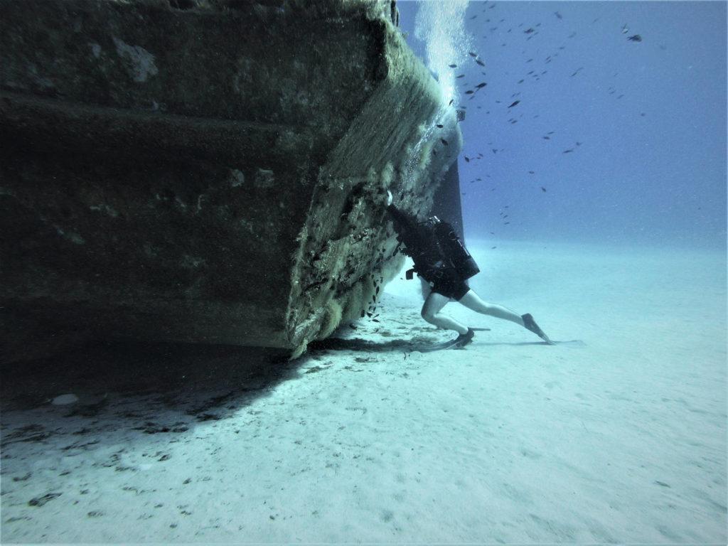 plongée comino p31