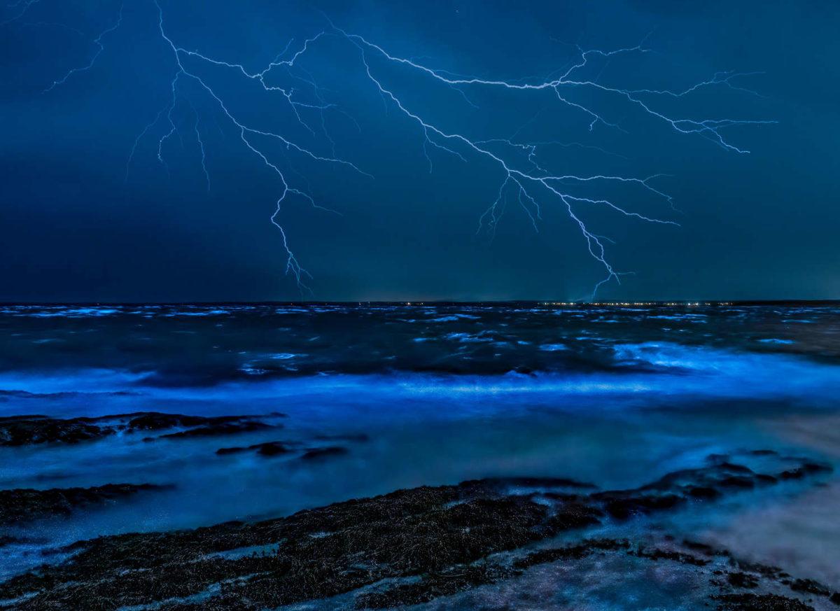Vagues bioluminescentes